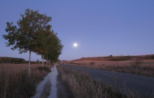 Meseta_by_moonlight.jpg
