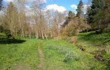 Golders Hill low res 4.jpg