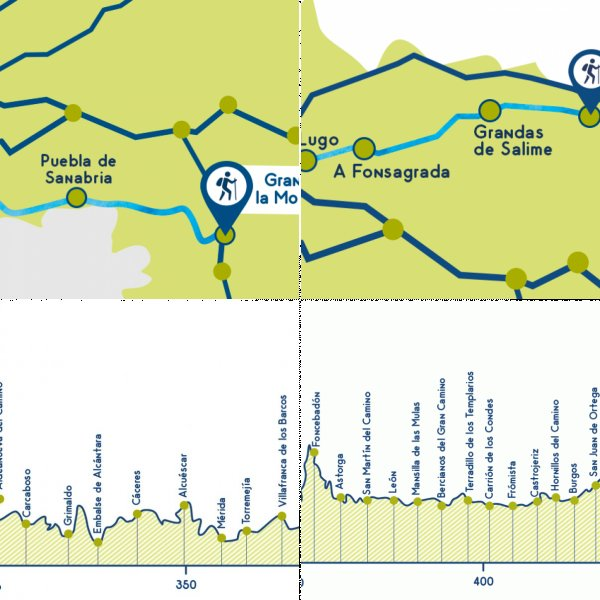 Stages map and elevation profile of the Camino main routes