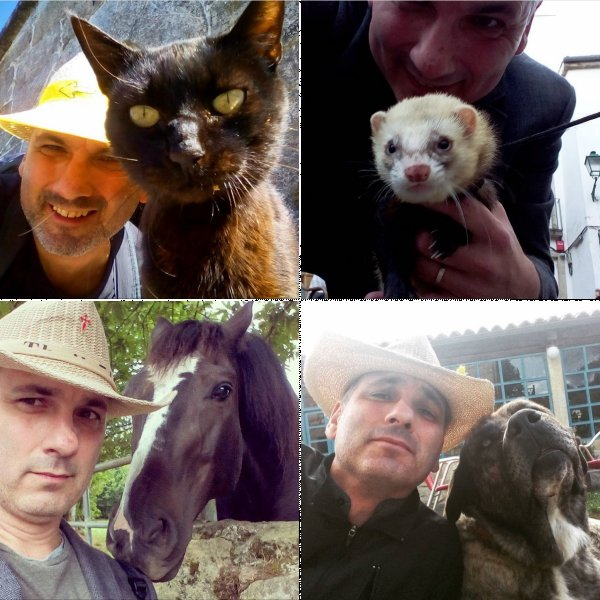 Selfies with Camino Animals