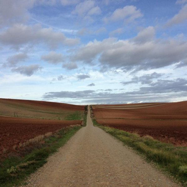 The long (NOT winding) road