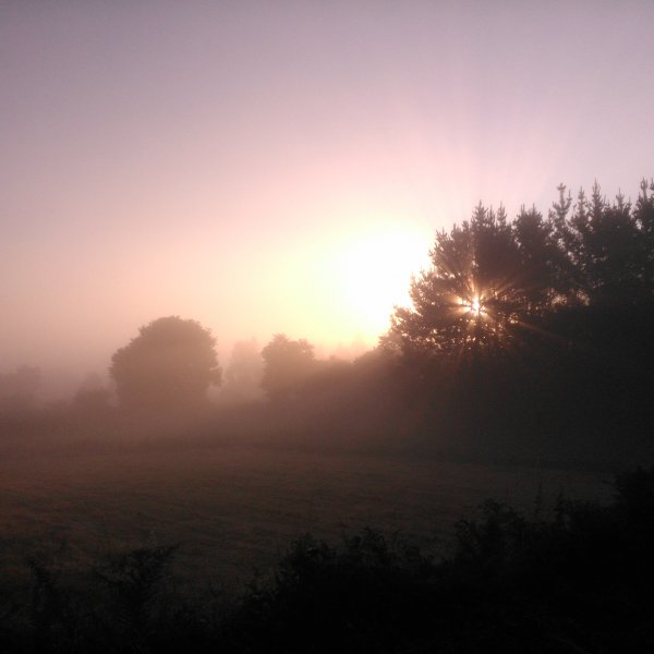 Misty morning in Galicia - August 2014