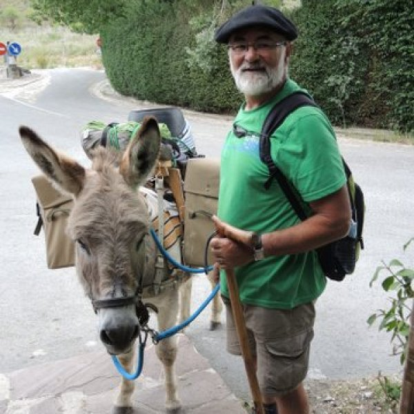 Have donkey will...travel