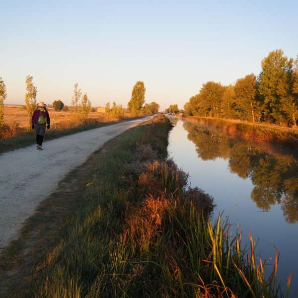 Morning Canal - approaching Fromista