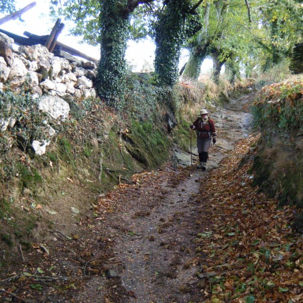Galicia (Hobbitland) Walking in a Stream