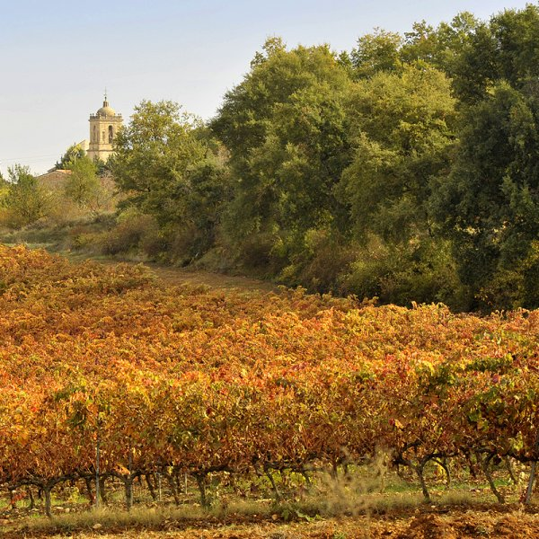 Monasterio de Irache among autumn-coloured vineyards