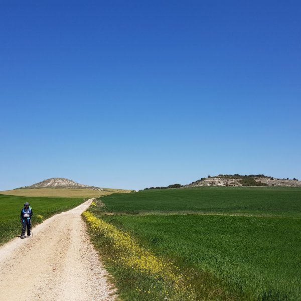 Big Sky Meseta - One of the best parts of the Camino Frances