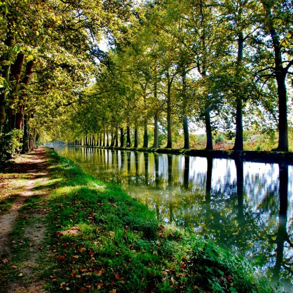 Reflections, canal outside Moissac.