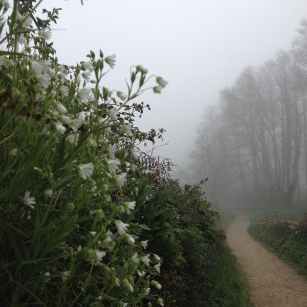 April 12 Heavy fog in the morning