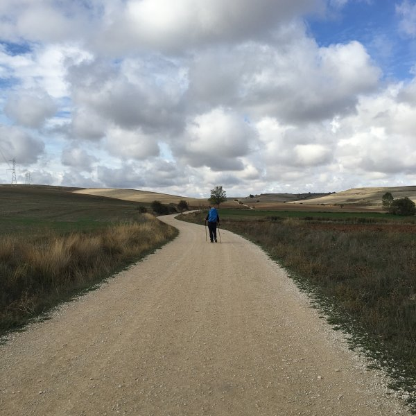 Deb walking the Camino Frances