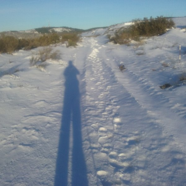 Self portrait in the snow today 1 March at Manjarin