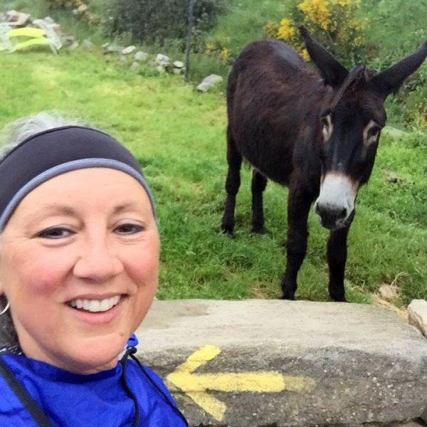 Camino buddy! June 2016