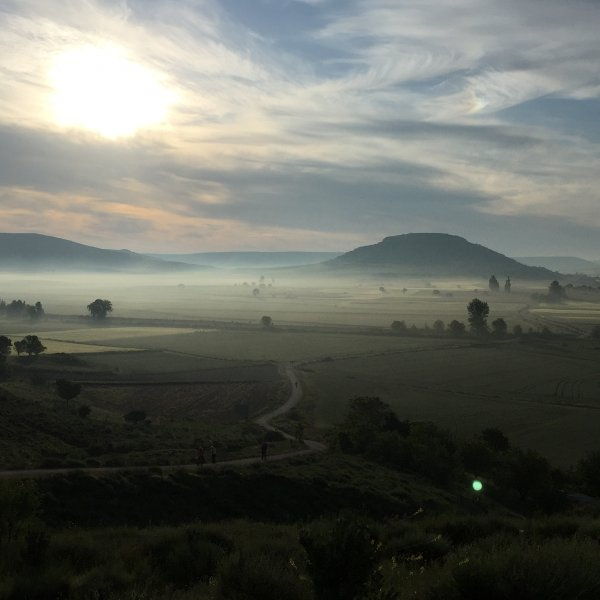 Early morning between Castrojeriz and Boadilla del Camino - June 2016