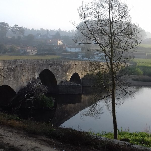 Vairão to Barcelos