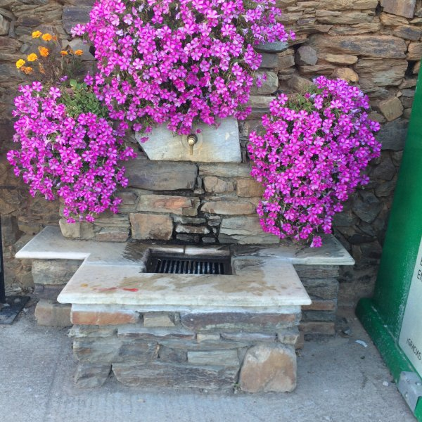 Village water fountain