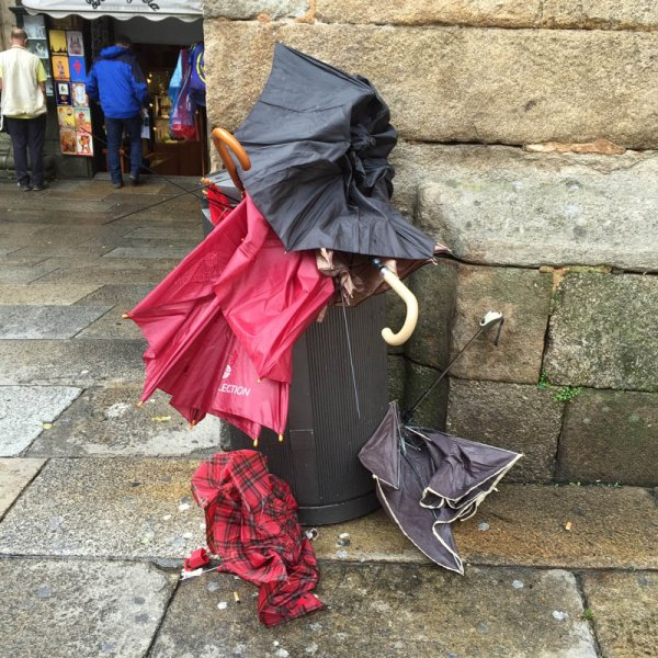 Where the umbrellas come to die!