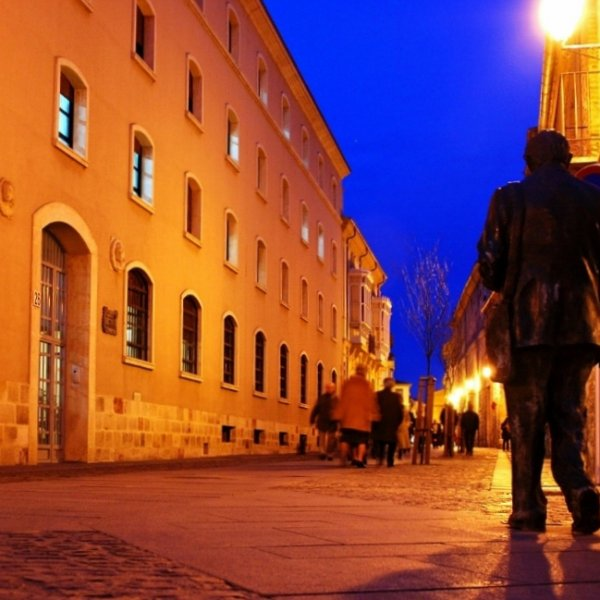 """Moving Statue"" Night time Zamora, Spain"