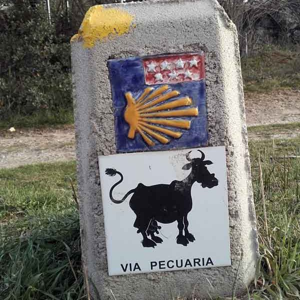 Camino Madrid Way Marker