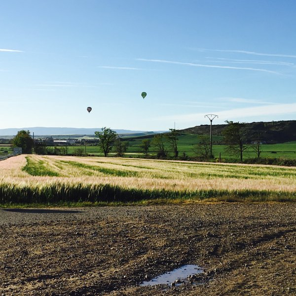 Balloons out of Navarette