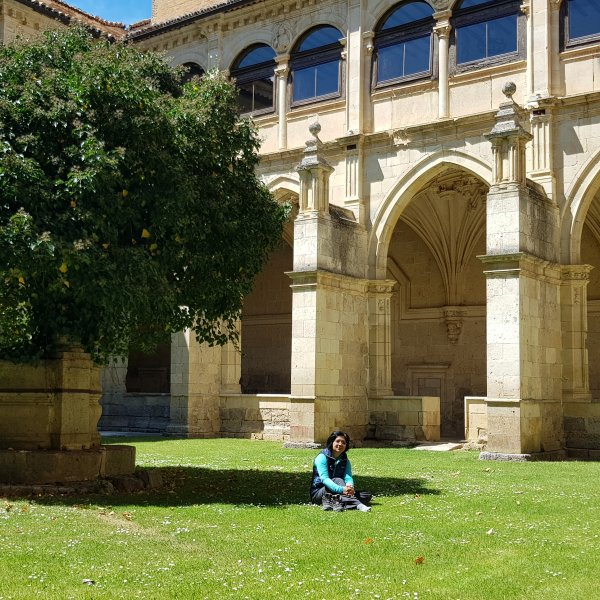Calming Cloisters