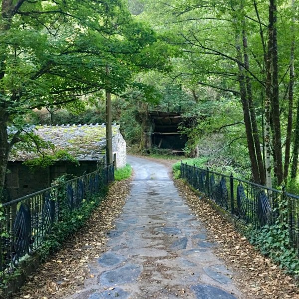 Fairy tale path Samos to Sarria