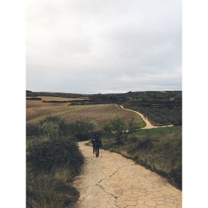 "Živilė on Instagram: ""Day 7: closer every dayTorres del Rio -> Logrono (20km)#caminofrances #elcamino #caminodesantiago"""